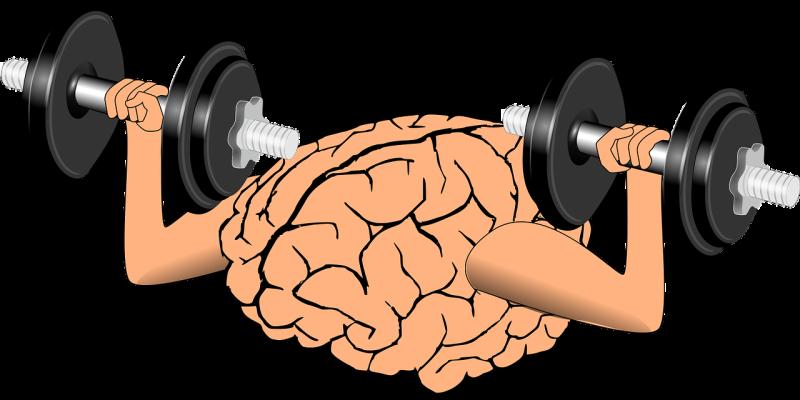 BRAINGYM ®– Kinesiologische Übungen während des Homeschoolings
