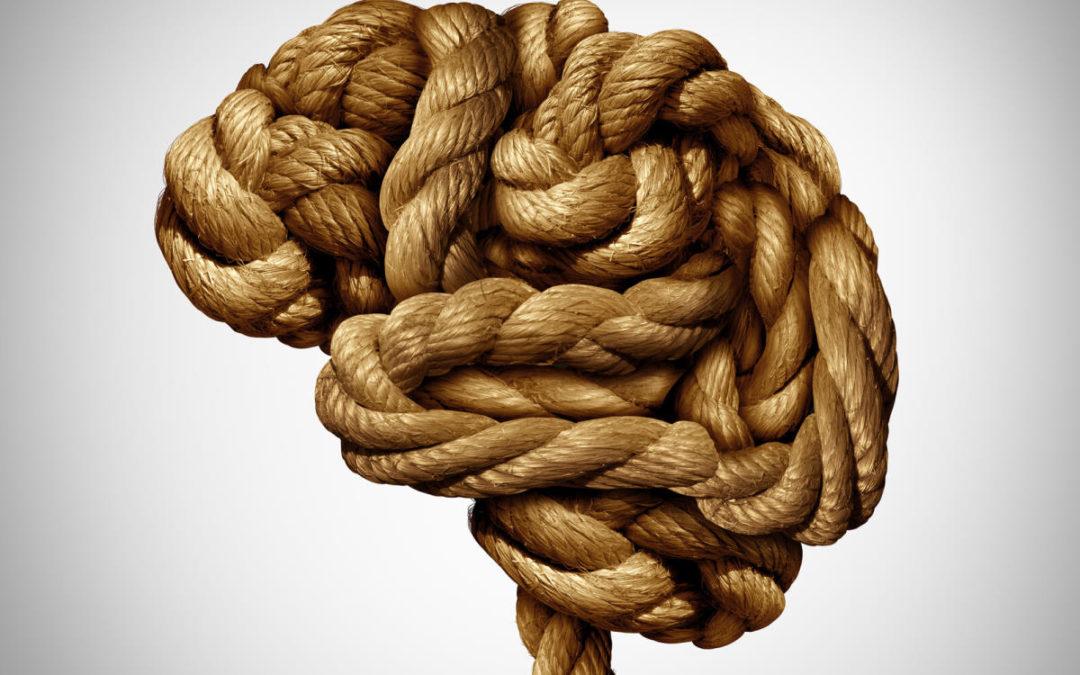 Epilepsie, wenn Neuronen sich plötzlich synchron entladen